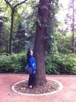 Hello, Mr. Tree!